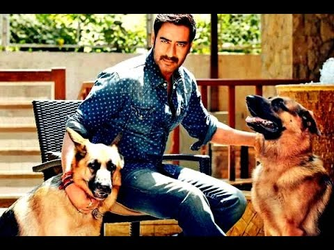 Bollywood Actors with their pets